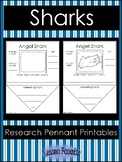 Sharks Research Pennant Posters