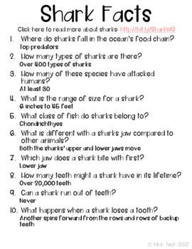 Sharks Webquest