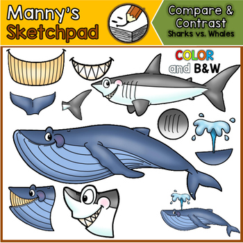 Sharks & Whales: Compare and Contrast Clip art