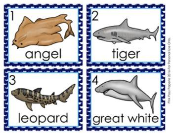 Sharks Write the Room