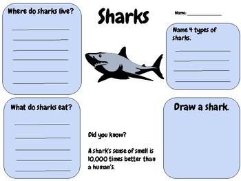 Sharks - Writing Activity