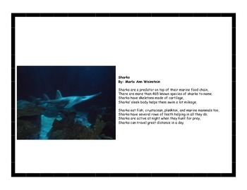 Sharks and Whales Activity Pack