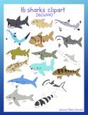 Sharks clip art