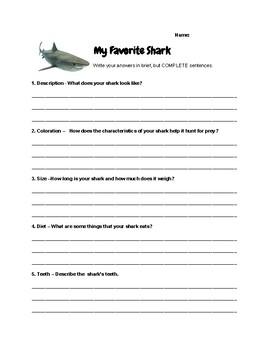 Sharks-graphic organizer