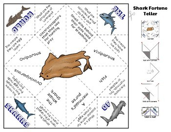 Sharks of the World Fandex & Activity Pages