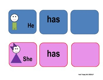 She has/He has graphic organizer