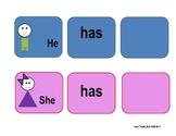 She has/He has graphic organizer