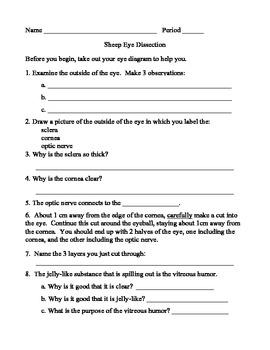 cow eye dissection lab sheet answers Archives   FREE Printable additionally  additionally Cow Eye Dissection Lab Worksheet to Pin on Pinterest in addition Diagram Of Eye With Labelling Awesome Worksheet The To Label in addition Cow Eye Dissection Worksheet Answers ly Cow Eye Dissection likewise Cow's Eye Dissection   Eye diagram also COW'S EYE dissection as well Sheep Eye Dissection  pdf  by Bryan F   Teachers Pay Teachers likewise Cow Eye Dissection Diagram New Cow Eye Dissection Worksheet Answers together with Cow Eye Anatomy Wonderfully Lab Final at Tarrant County Munity in addition Cow Eye Dissection Worksheet Answers The best worksheets image furthermore Cow Eye Dissection Worksheet   Sanfranciscolife in addition Cow Eye Dissection Worksheet Answers   Kidz Activities in addition cow eye dissection diagram – tropicalspa co additionally Eye Dissection together with 15 Cow Eye Dissection Arbeitsblatt Antworten   Bathroom   Cow eyes. on cow eye dissection lab worksheet