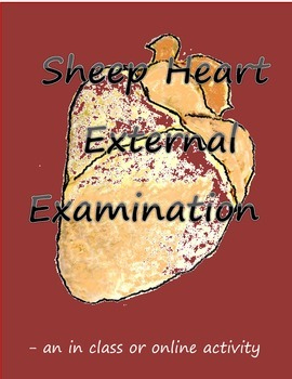 Science - Sheep Heart External Examination (in class or online)