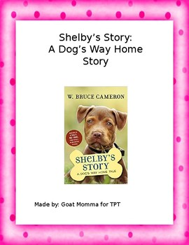 Shelby's Story Novel Literature Guide