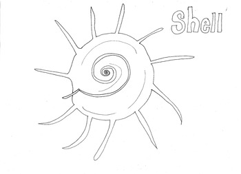 Shell (2) Colouring Page