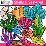 Shell Clip Art: Seashells & Coral Ocean Life Graphics {Glitter Meets Glue}