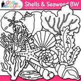 Shell Clip Art: Seashells, Coral, Driftwood, & Seaweed B&W {Glitter Meets Glue}