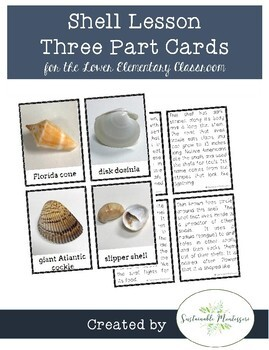 Shell Lesson Three Part Cards