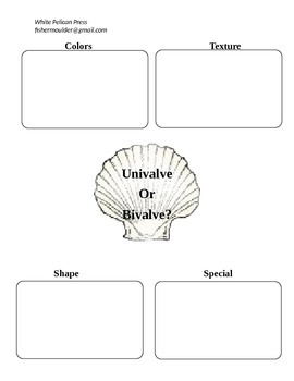 Shell Seekers: Descriptive Writing for Third through Fifth Graders