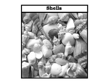 """""""Shells, Leaves, & Fish"""" Black and White for Autism"""