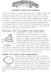 Shells Life Science: Classify Shells