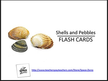Shells and Pebbles Flash Cards