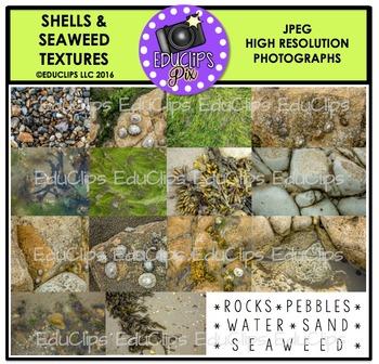 Shells and Seaweed Textures Photo Set {Educlips}