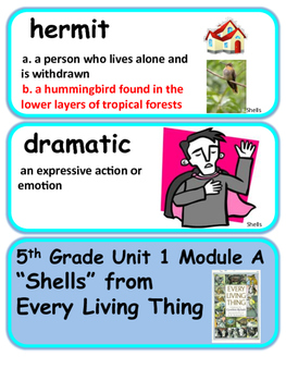 ReadyGen Shells from Every Living Thing Word Wall Vocabulary Cards 5th grade