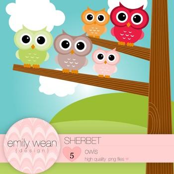 Sherbet - Owl Clip Art