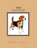Shiloh Study Guide