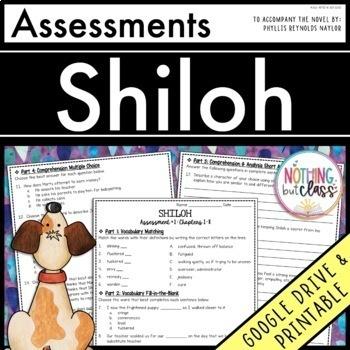Shiloh: Tests, Quizzes, Assessments