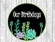 Shiplap & Succulents Birthday Board Display