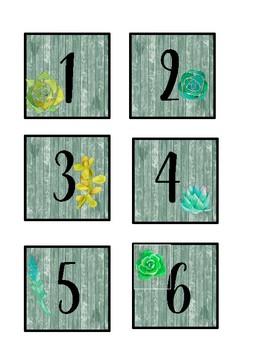 Shiplap & Succulents NUMBERS!