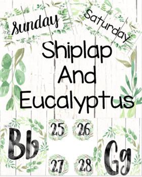 Shiplap and Eucalyptus