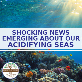 Shocking News Emerging About Our Acidifying Seas - Reading Guide