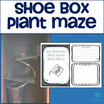 Shoe Box Plant Maze (Living Things)