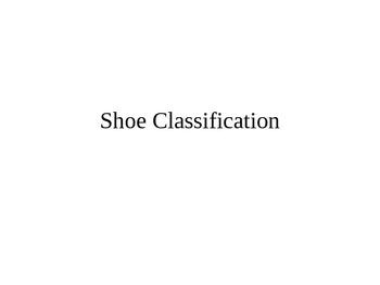 Shoe Classification Group Activity