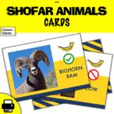Shofar Animals!