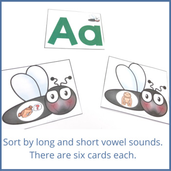 Shoo Fly!! Initial Sounds and Letter Identification