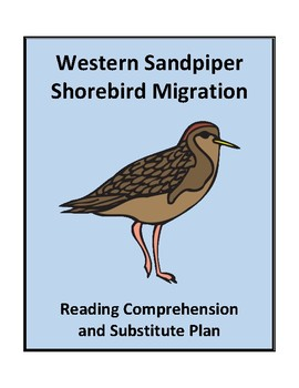 Shorebird Migration - Reading Comprehension and Substitute Plan