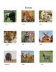 Short Animal Reports