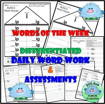 WORD FAMILY CVC WORD WORK Short I IP and IG  Activities ASSESSMENTS