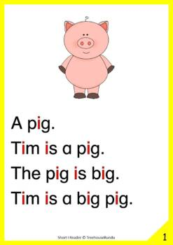 Short I Reader & Worksheets & Flashcards: Tim the Pig