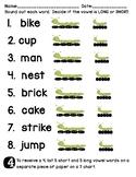 Short & Long Vowel Assessment Quiz Test Worksheet