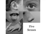 Short Story Writing Activity: 5 Senses/Jumbled Story Arch