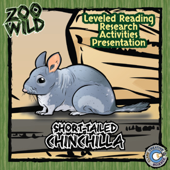 Short-Tailed Chinchilla -- 10 Resources -- Coloring Pages,