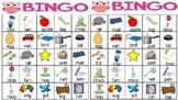 Short Vowel Bingo (A,E,I,O)