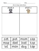 Short Vowel CVC Word Sorts