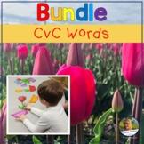 Short Vowel Words BUNDLE Blending and Segmenting cvc Words