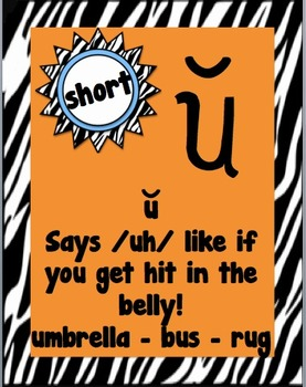 Short Vowel Posters - Zebra Themed