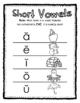 Short Vowel Sound Identification Poster
