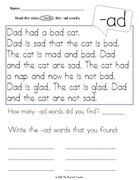 CVC CCVC Short Vowel Word Family Passages for Fluency Comprehension Word Work