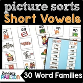 Word Family CVC Picture Sorts