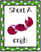 Short Vowel Word Sort {Differentiated} With Visual Supports + Seat Work